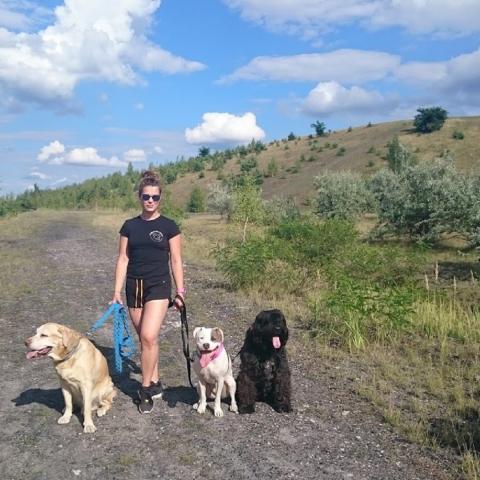 Amstaff Teqi, Labrador Fado, Bouvier des Flanders Roxi spacer