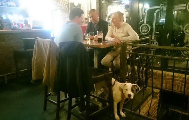 amstaff w restauracji